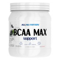 BCAA 2:1:1 Max Support (500г)