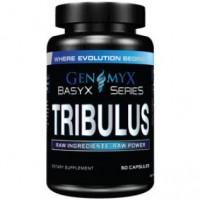 Tribulus (60капс)